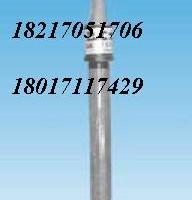 SZ283意大利B&C余氯电极,SZ654.1溶氧探头