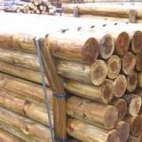 上海市原木进口报关上海通关800一票安全快捷经济