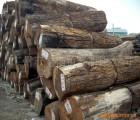 马达加斯加小鞋木豆进口报关代理_上海外高桥进口代理