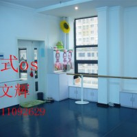 舞蹈房专用地胶,舞台运动地胶,芭蕾舞用地胶