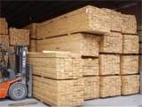 橡胶木木方进口深圳盐田口岸的操作流程是怎样的
