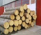 东非黑黄檀木材进口报关中国海运上海木材报关行