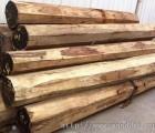 墨西哥原木板材进口南沙港报关代理