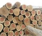 宁波橡胶木进口清关报关代理