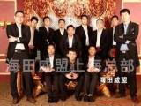 上海刺猬紫檀进口清关关税/海关审价费用/清关物流