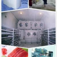高品质低温冷库-速冻冷库-保鲜冷库-冷藏冷库