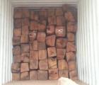 黄埔港铁木豆进口报关行代理报关手续 广州木材进口报关公司