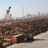 深圳港如何进口南美洲铁木豆