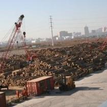 深圳进口南美洲蒺藜木烟熏消毒办理