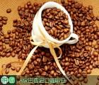 东南亚食品进口代理,咖啡豆进口清关