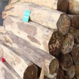 南美铁木豆进口清关应该怎么操作/进口报关铁木豆报关