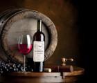 上海进口黄尾袋鼠 澳洲原瓶进口加本力苏维翁干红葡萄酒报关报检