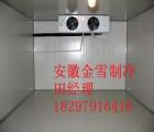 供应合肥芒果保鲜冷库最适合的温度
