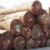 东南亚白木进口报关|流程|代理