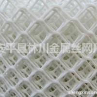 塑料平网 万能网 护坡网 滤芯网