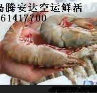 青岛物流运输 螃蟹空运 海鲜快运 上门接货