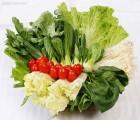 郑州新鲜蔬菜配送公司 郑州酒店新鲜蔬菜配送