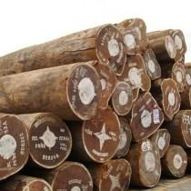 西班牙冈比亚刺猬紫檀/非洲黄檀寮步口岸木材进口报关代理