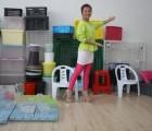 黄岩塑胶模具保鲜盒模具,塑胶盒模具,打包盒模具