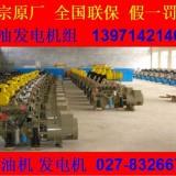 武汉发电机出租/发电机维修/供应柴油发电机组/发电机组销售