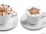 速溶墨西哥咖啡正常进口报关如何减少清关流程?