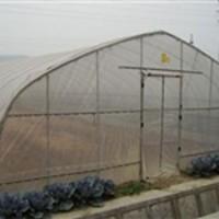 烟台大棚骨架厂家,【刘姐】,蔬菜大棚骨架厂家