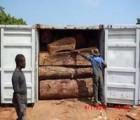 印度尼西亚阔叶黄檀木材进口报关费用|黄埔港进口印尼紫檀买单报