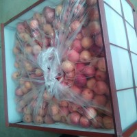 山东苹果批发产地山东苹果行情13791598098