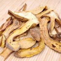 河北野生鸡油菌功效与作用 松露 黑虎掌菌等一斤也批发