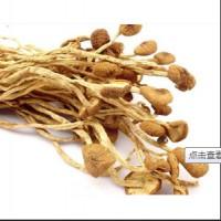 农家茶树菇,修水土特产,屋背山上特产.