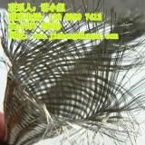 供应广东金泓生产优质不锈钢针织网套规格型号