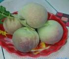 潍坊最超值的蜜桃王供应――青州