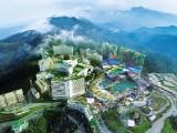 哈尔滨至泰国旅游|旅游芭提雅多少钱|纵横旅游-全国百强旅行社