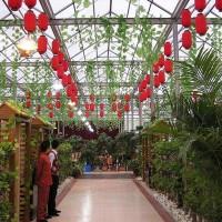 供应吉林市花卉阳光板用途