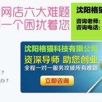 丹东淘宝网店代运营专业网店托管新手淘宝店主运营技巧