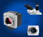 厂家直销300万像素USB显微镜摄像头工业摄像头CCD电子目