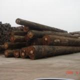 非洲南美越南缅甸老挝原木木材进口报关公司,代理进口红木红酸枝