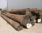 南非原木进口|木材进口报关流程|东莞木材进口报关公司