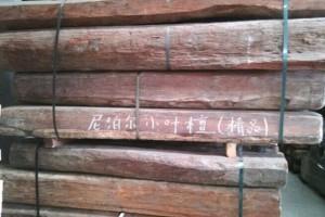 出售尼泊尔小叶紫檀原木