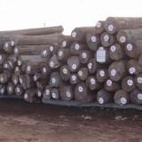 印尼柚木进口东莞沙田报关代理服务|洽源木材集装箱进口清关公司