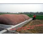 海南省儋州市红泥沼气袋 沼气储气袋 污水处理成套设备 农用