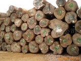 老挝木材代理广州黄埔港进口报关木材公司