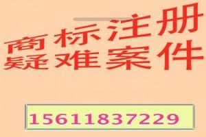 沈阳电商质检初中专业2013排名市场晋江图片