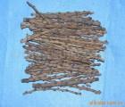 【拉菲草】供应刺藤(无刺),西班牙水草,拉菲草