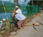 三阳丝网报价(图)|生态景区围栏|景区围栏