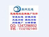 中山网络推广专家、网络推广专家、扬名网络(在线咨询)