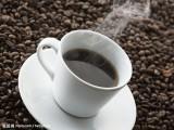 韩国咖啡粉报关公司