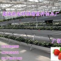 种植槽厂 高架草莓槽 立体种植槽架 气雾栽培种植槽