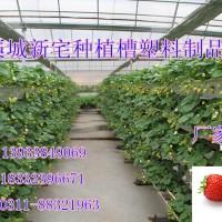 大棚草莓槽 气雾栽培槽 高架草莓种植槽