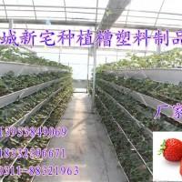 草莓种植槽新宅推荐用草莓槽